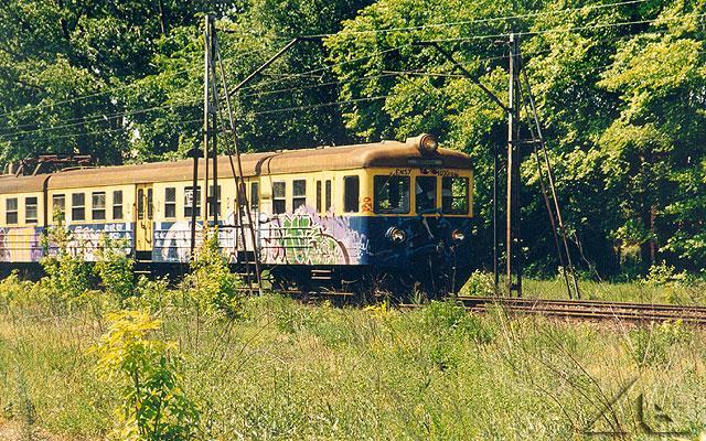 Pociąg do Tłuszcza. Zdjęcie zrobione między Wołominem a Słoneczną niedaleko harcówki