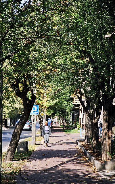 Chodnik spacerowy przy ulicy Legionów.<br>Po prawej stronie znajduje się budynek, w którym mieści się apteka oraz komisariat policji miejskiej.