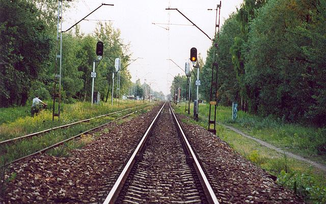 Jeszcze jeden motyw kolejowy. Widok od Zagościńca